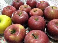秋間梅林のお土産、リンゴ18個で1000円 - 設計事務所 arkilab