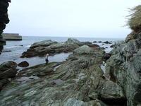 今年もこの季節が来ました。 - 名勝和歌の浦 玉津島保存会