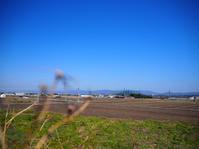 電動自転車でだんご庄へ。 - Photo*Today & Then