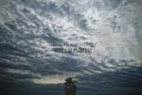 暗雲の中で佇む。 - ~風紋~徒然歳時記
