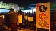 水戸弘道館の夜梅祭 - のんびりタルトパイ日記
