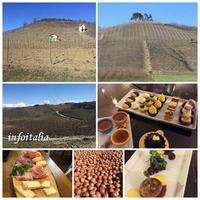 バローロ、アルバ、アスティ(ピエモンテ州) - イタリアを楽しもう!
