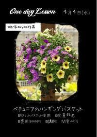 4月One-day Lessonのお知らせ - さにべるスタッフblog     -Sunny Day's Garden-