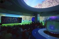海月姫のクララに会いに新江ノ島水族館に行ってきました。 - エーデルワイスPhoto