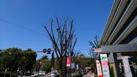 青空と熊本城とクレーンと。 - 青い海と空を追いかけて。