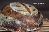 カンパーニュ 2018-5 - 森の中でパンを楽しむ