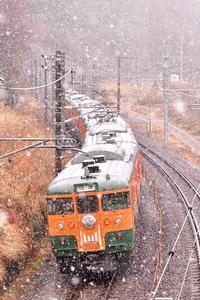 ありがとう115系~信越本線の旅・上越線の旅~ - 花鳥風月…空Photo blog
