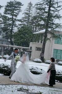 春の装花 東京女子大学様の結婚式へ、3月の雪の日の魔法に - 一会 ウエディングの花