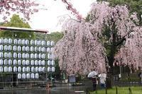 上野ー御徒町 - うろ子とカメラ。