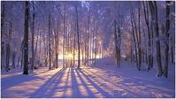 この時期に雪~~~! - The Gate of Praise 祝福日記