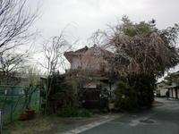 ブログ更新が滞っているうちに・・・。 - 京都嵐山 着物レンタル&着付け「遊月」