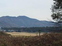 里山の雑木林でのオオクワを求めて 下見散策  台場クヌギは…   part1  with  morisukeさん - Kuwashinブログ