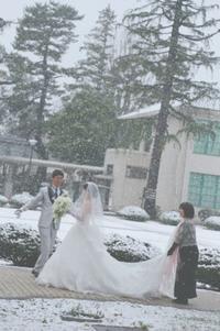 春の装花 東京女子大学様の結婚式へ 3月、雪の日の魔法に - 一会 ウエディングの花