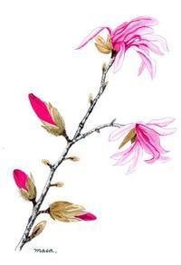 ♪こぶし咲く~ - がちゃぴん秀子の日記