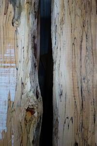 スポルテッドブナSpalted Beech - SOLiD「無垢材セレクトカタログ」/ 材木店・製材所 新発田屋(シバタヤ)