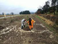 目指せフルーツパーク! - 滋賀県議会議員 近江の人 木沢まさと  のブログ