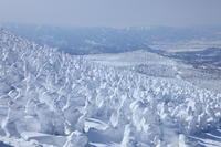 蔵王の樹氷が... - tokoya3@