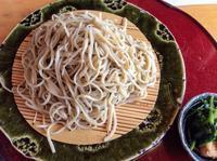 三毳山のカタクリの後は、地元のおじさんが教えてくれたラーメン屋ではなく、手打そば「浪崎」の大もりと野菜天ぷらでした。 - 設計事務所 arkilab