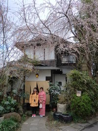 咲きはじめた桜の下で。 - 京都嵐山 着物レンタル&着付け「遊月」