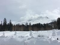 最後の雪遊び~三段山スノーシュー - IL PARADISO VERDE DI NORINA ~美瑛印象派ガーデン便り~
