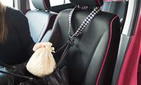 【便利】フックベルト【おしゃれ】 - かわいいカー雑貨のお店ココトリコのブログ