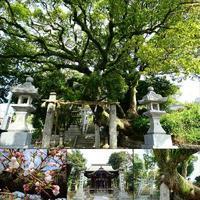 八劍神社 - NATURALLY