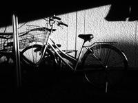 自転車 - 空を見上げて