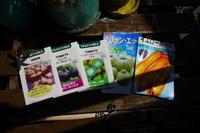 春夏野菜もポット作り - 畑であそぶ ~のんびり家庭菜園・畑しごと~