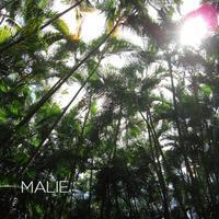 静かなコース【MĀLIE】 - aloha healing Makanoe