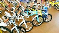 コーダブルームの季節 - 滝川自転車店