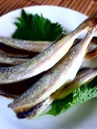 氷下魚 - 東京ライフ