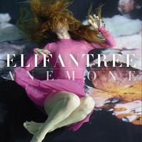 Elifantree - 4枚目アルバムリリース - タダならぬ音楽三昧