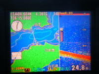 釣り日和 - 魚里夢中