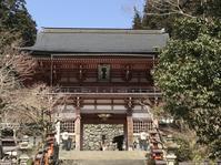 ★京都、大阪★4泊5日の次男卒業記念旅行 - Piccola felicita
