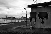 美浜原発がある漁港 - 父ちゃん坊やの普通の写真その2
