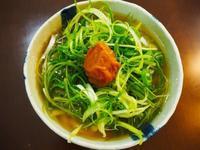 九条ねぎうどんと肉うどん - sobu 2