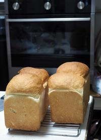 ベルタゾーニのガスオーブンで食パンを焼く - お茶の水調理研究所