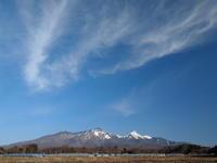 鵺の鳴く夜明け - 八ヶ岳 革 ときどき くるみ