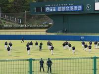 ヤクルトスワローズ2019春季キャンプ日程、 1・2軍メンバー振り分け - Out of focus ~Baseballフォトブログ~