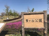 蟹ヶ谷公園の花木と野鳥 - つれづれ日記