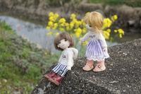 春の散歩 - マミィの花と手づくりの時間