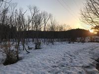 充実のリフレッシュ♪雪の磐梯山&會津一番館&喜多方「福寿草まつり」 - neige+ 手作りのある暮らし