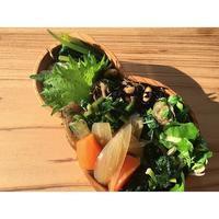 カレイニラソースBENTO - Feeling Cuisine.com