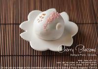 写真映えスイーツ:桜のお菓子は桜の季節に。榮太郎総本舗の『桜吹雪』をsony α7RIII +SEL24105G - 東京女子フォトレッスンサロン『ラ・フォト自由が丘』-写真とフォントとデザインと現像と-