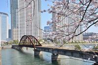 晴海鉄道橋とさくら - kenのデジカメライフ