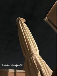 ルーフバルコニーどうしましょう♪ - Lilasbouquet+HOME&F