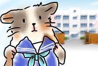 新6年☆塾の面談のハナシ - もるもってぃ家の中学受験ぶろぐwithでざいなーライフ