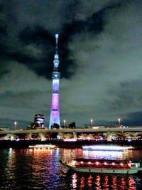 夜桜@隅田川 - Daily Green (デイリー・グリーン)