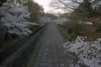 今朝の京都 インクライン 南禅寺 - 京都ときどき沖縄ところにより気まぐれ
