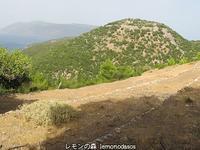 古代サミの二つのアクロポリスケファロニア島 - 日刊ギリシャ檸檬の森 古代都市を行くタイムトラベラー
